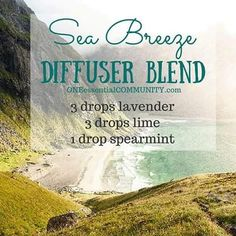"""Sea Breeze essential oil diffuser blend. You\'ve got to try this ASAP! Please """"LIKE"""" me on Facebook: https://www.facebook.com/EOAdventureswithBecky ~~ Need to purchase oils? You can find out more information at https://www.youngliving.com/signup/?sponsorid=2385830&enrollerid=2385830 ~~"""