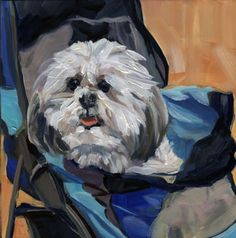 Google Image Result for http://cdn.dailypainters.com/paintings/art_miami_dog_in_a_stroller_dogs__animals__8aeb942cc2cafb757fd82603afed45d7.jpg