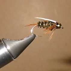 » Prince Nymph Pattern - Fly Fishing & Fly Tying Information Resource