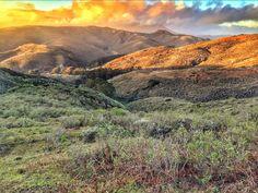 Marin County. Photo by EO co-founder Brad Black