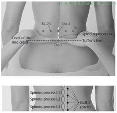 Ex-B-7-Lumbar-Eyes-YAOYAN-Acupuncture-Points-2.jpg (398×384)