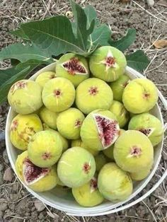 Fig 'Little Ruby' (Ficus carica) Fresh Fruits And Vegetables, Fruit And Veg, Growing Fruit Trees, Yellow Foods, Fruit Photography, Fresh Figs, Fruit Drinks, Tropical Fruits, Delicious Fruit