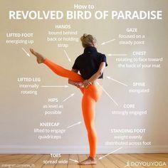 Bird Of Paradise Pose | Yoga Pose | Yoga Inspiration | Yogi Goals #YoYoYoga-PosesandRoutines