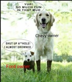 Your daily dose of funny cute cuddly hilarious and silly animal pictures :) Love My Dog, Puppy Love, Baby Animals, Funny Animals, Cute Animals, Wild Animals, Baby Dogs, Dogs And Puppies, Doggies