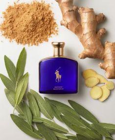 Carolina Herrera, Polo Blue, Beauty Sale, Parfum Spray, Blue Gold, Perfume Bottles, Polo Ralph Lauren, Pure Products, Beautiful