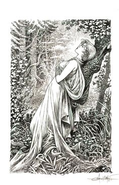Planche originale de bande dessinée, galerie Napoléon  : SAGA VALTA - Illustration originale pour l'art book de SAGA VALTA tome 1 par Mohamed AOUAMRI -