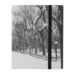 Central Park in Winter, New York City. Cold and snowy is finally coming to an end. #nyc #ipad #gift