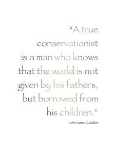 """""""A true conservationist is a man who knows that the world is not given by his fathers, but borrowed from his children."""" ~John James Audubon #environment #nature #quote #trees"""