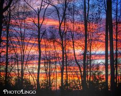 Fine Art Photography, Sunrise, Sky, Trees, Landscape Photography, Virginia, Woods, Nature Photography, Photography, Wall Decor, Wall Art, Home Decor www.etsy.com/shop/PhotoLingo