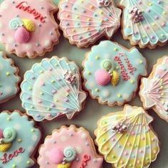 beautiful sea shell cookies