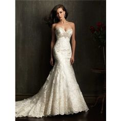 CC's Boutique offers the Allure Bridal dress 9051 at a great price. Call today to verify our pricing and availability for the Allure Bridal 9051 dress. Delicate Wedding Dress, Ivory Lace Wedding Dress, Sweetheart Wedding Dress, Lace Mermaid Wedding Dress, Bridal Wedding Dresses, Mermaid Dresses, Cheap Wedding Dress, Bridal Lace, Dream Wedding Dresses