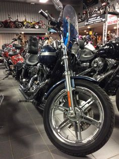 2003 Dyna Low 100th Anniversary with extras! A must see