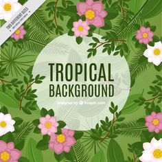 Exotic flowers background Free Vector