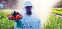 """""""NÃO ESTAMOS FICANDO DOENTES. ESTAMOS SENDO ENVENENADOS""""- Nas últimas semanas, duas grandes organizações médicas emitiram avisos separados sobre substâncias químicas tóxicas nos..."""