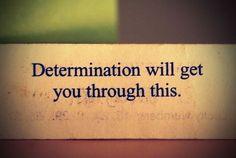 determination determination determination