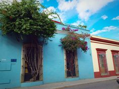 Photos and First Impressions of Oaxaca, Mexico