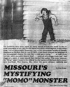 Momo Monster Missouri | Implications of New Fossil Material Attributed to Plio-Pleistocene ...