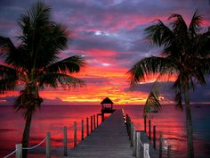 Sunset at hotel Maitai Dream Fakarava in French Polynesia The Places Youll Go, Great Places, Places To See, Beautiful Sites, Beautiful Places, Beautiful Pictures, Vie Simple, Destinations, Paradise On Earth