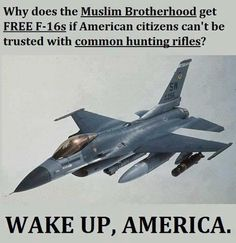 Why does the Muslim Brotherhood get FREE if American citizens can't be trusted with common hunting rifles? WAKE UP, AMERICA. Evil People, We The People, Muslim Brotherhood, Thing 1, Hunting Rifles, Duck Hunting, F 16, Our Country, God Bless America