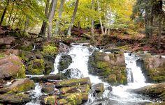 Die wunderschöne Selke im Harz, bei Alexisbad