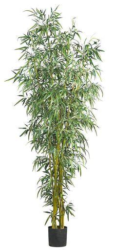Fancy Style Bamboo Silk Tree with Nursery Planter   8 feet