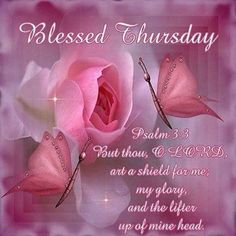 Blessed Thursday good morning thursday thursday quotes good morning quotes happy thursday thursday quote good morning thursday happy thursday quote beautiful thursday quotes thursday quotes for friends and family Happy Thursday Images, Thursday Greetings, Happy Thursday Quotes, Good Morning Thursday, Thankful Thursday, Good Morning Good Night, Good Morning Quotes, Morning Images, Morning Verses