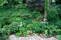 The use of some hardscape material such as river rock helps to showcase the surrounding plants.