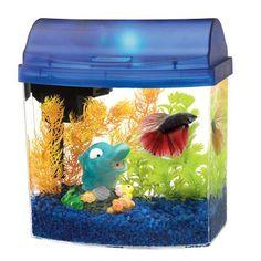 Aqueon Betta Mini Bow 2 5 Gallon Aquarium Starter Kit