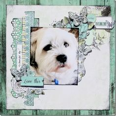 Kaisercraft - Honey Chai - Wendy Smith @ Anna's  Use as inspiration for a layout with Bama's picture.
