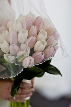 Bridal bouquet- wrapped with lace- can add in white spray roses - see boutonniere option 3 for flower reference) Tulip Bouquet Wedding, Spring Wedding Bouquets, Wedding Flower Arrangements, Bride Bouquets, Bridal Flowers, Floral Wedding, White Tulip Bouquet, Flower Bouquets, Gown Wedding