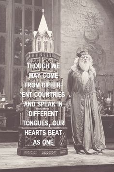 This quote represents a concept that should be taught to young children at an early age. We are all equal. Dumbledore Quotes, Film Serie, Decir No, Goblet Of Fire, Yer A Wizard Harry, Harry Potter World, Hermione, Hogwarts, Slytherin