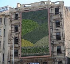 The first vertical garden in Istanbul