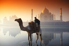 Agra, India. #travel #travelinsurance #iloveinsurance See the world. Do your travel insurance comparison online, save time, worry, and loads of money. http://www.comparetravelinsurance.com.au/
