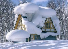 Snowed in! I live in Maine and I think that's too much snow - but pretty!!