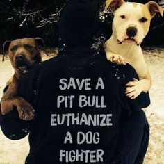 Pitbull Terrier Pit Bulls deserve better than to be fought - You'll love these cute puppy pictures.they're awwww-some! Animals And Pets, Cute Animals, Animals Planet, Pitbulls, Dobermans, Stop Animal Cruelty, Dog Cruelty, Cruelty Free, Dog Fighting