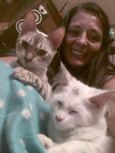 Maine Coon & Bengal girls ready to sleep on my lap... Love is... something like this