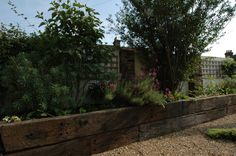 - Fruit and Veg Garden in East London - Earth Designs Landscape Gardener Leigh on Sea Essex Railway Sleepers, Boundary Walls, Contemporary Cottage, Earth Design, Veg Garden, Side Wall, Fruit And Veg, East London, Flower Beds