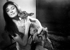 Des photos peu connues d'Audrey Hepburn qui capte son charme «Iconic» | blog avenue-vivi