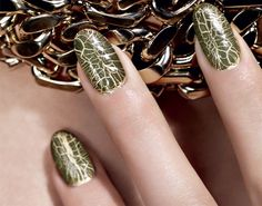 Dior Vernis #001 Duo Crocodile (Golden Jungle Collection)