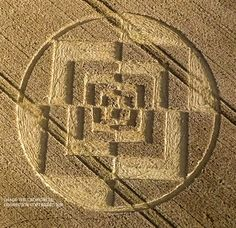 Crop Circle at Sparticles Wood, Nr Chaldon, Surrey. Reported 3rd August 2016