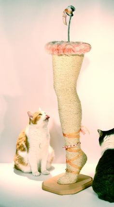 diy cat leg Scratching Post