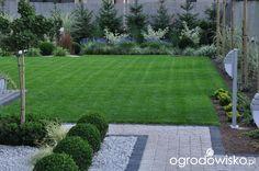 Lawendowy zawrót głowy - strona 770 - Forum ogrodnicze - Ogrodowisko