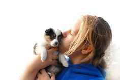we love all dogs especially puppies