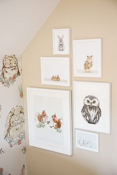Woodland Gallery Wall