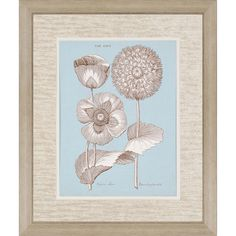 Chambray Chintz III Framed Painting Print