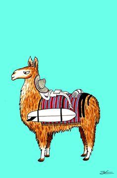 Siesta-Llama-drawing