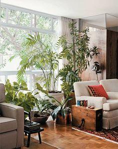 Como ter e manter plantas em pequenos espaços   Simples Decoracao   Simples Decoração