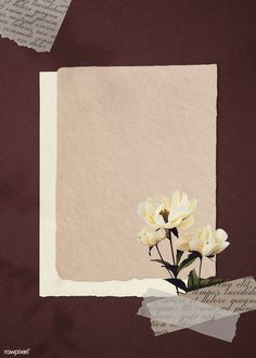 White peonies on paper textured background illustration Framed Wallpaper, Pastel Wallpaper, Wallpaper Backgrounds, Pretty Backgrounds, Summer Backgrounds, Backgrounds Free, Aesthetic Backgrounds, Aesthetic Wallpapers, Cadre Design