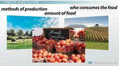 Types of Agriculture: Industrialized and Subsistence Agriculture - Video & Lesson Transcript | Education Portal http://education-portal.com/academy/lesson/types-of-agriculture-industrialized-and-subsistence-agriculture.html#lesson