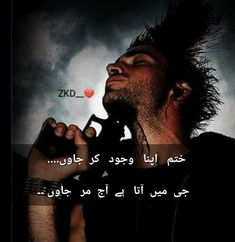 Bindas Log, Heart Touching Shayari, Romantic Poetry, Urdu Quotes, Urdu Poetry, Wish, It Hurts, Words, Horse
